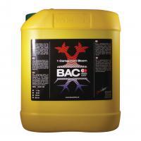 BAC 1 Component Bloei