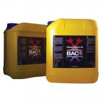 BAC Cocos Bloei A + B