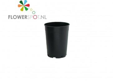 Pp rozenpot rond  7 ltr.  21 ø
