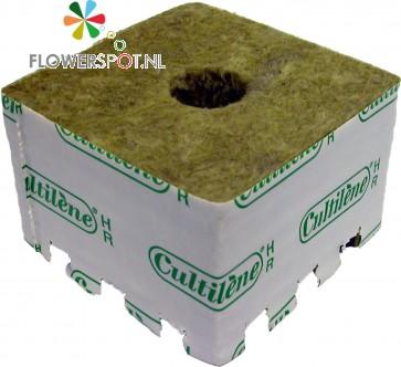 Cultilene Startblok  28 mm. 480st.  p/doos 75x75x65  28/35