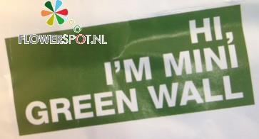Mini green wall, afmeting 29,5 x 100,5 cm