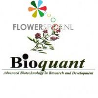 Bioquant, Bifec-res 2.5ml