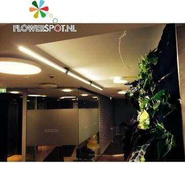 Linear-Spot-LED 120 cm, 30º, 60Watt, tbv vensterbank/bureau