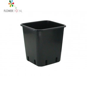 Pe pot vierkant 11l (italie) 24x24x28 cm.