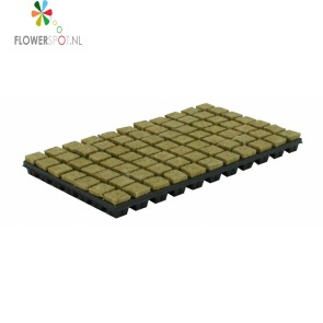 Cultilene Steenwoltray 150st p/tray 2x2 cm P/st