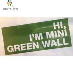 Mini green wall, afmeting 29,5 x 120,5 cm