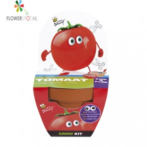 Buzzy kids grow kit tomaat