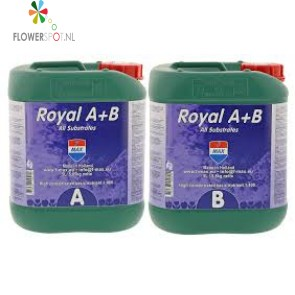 Royal A&B 10 Ltr