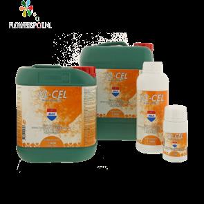 XL-Cel 250 ml